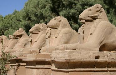 EGYPTE 082 - KARNAK TEMPLE - BELIERS 2