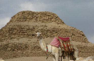 EGYPTE 089 - CAIRE - SAKKARAH - PYRAMIDE DE DJOSER 20