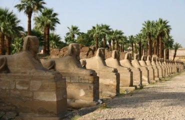 EGYPTE 117 - LOUXOR TEMPLE - ALLEE DES SPHINX 3